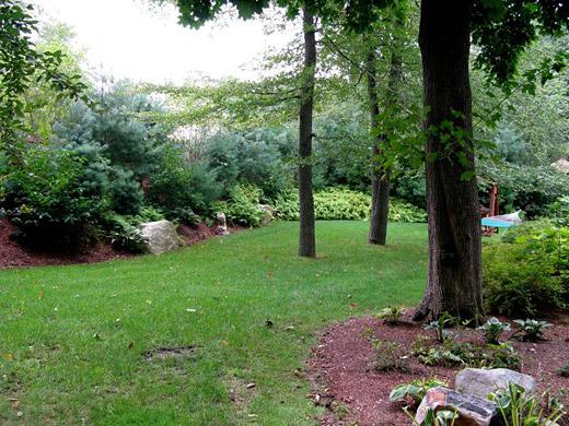 Berm sally muspratt landscape design for Landscape berm design