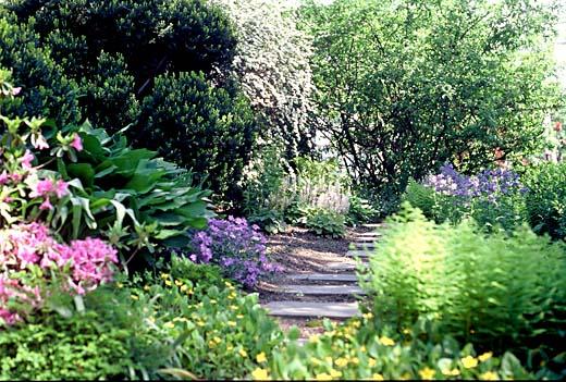 Wildflower Walk Sally Muspratt Landscape Design